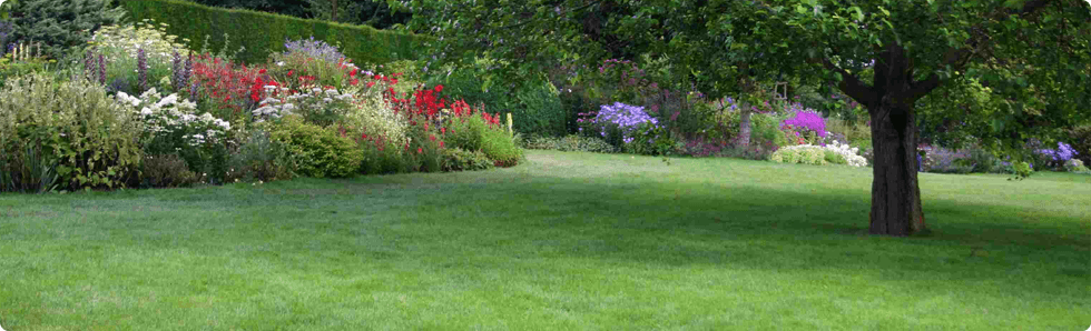 Labadi Lawn Care - Professional Lawn Care in Southern New Hampshire ...